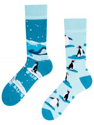 The Penguins, Todo Socks, Pingwiny z Madagaskaru, Kolorowe Skarpetki - Pingwiny